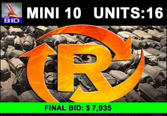 Mini Ten Auction