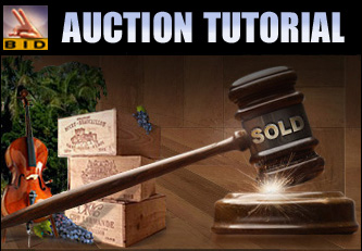 Place A Bid Tutorial